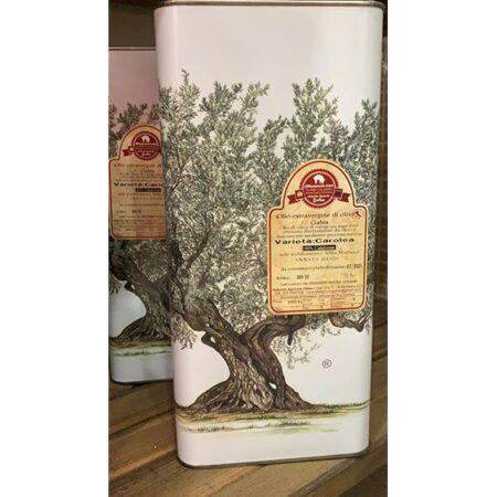 Olio extravergine di Oliva Biologico 5 litri, con olive di varietà Carolea, prodotto dall'azienda agricola Galea